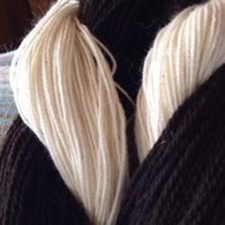 yarn250