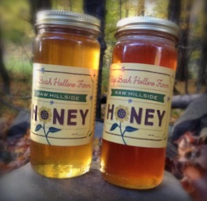 Fall Honey